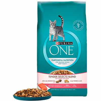 free bag of purina one cat food - Free Bag of Purina One Cat Food