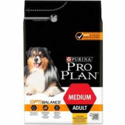 free puppy and kitten starter kits from purina 180x180 - Free Puppy and Kitten Starter Kits From Purina