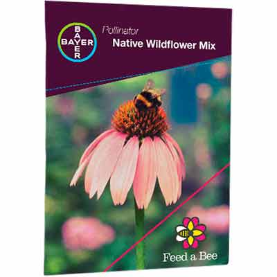 free wildflower seeds packet - FREE Wildflower Seeds Packet