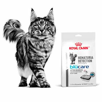 free royal canin hematuria detection sample - FREE Royal Canin Hematuria Detection Sample