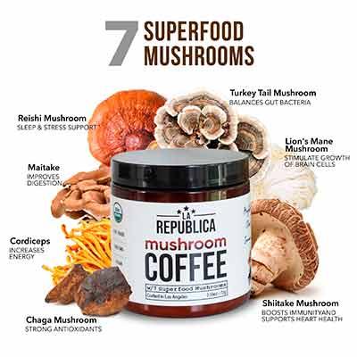 free la republica mushroom coffee sample - FREE La Republica Mushroom Coffee Sample